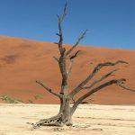 CBTravel-Namibië_recensie